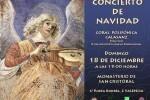 Cartel del Concierto de Navidad de San Cristóbal, 2011