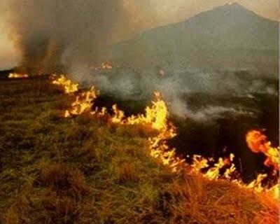plan_quemas agricolas
