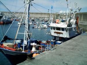 El Consell se reúne con el gobierno para tratar la situación del sector pesquero valenciano