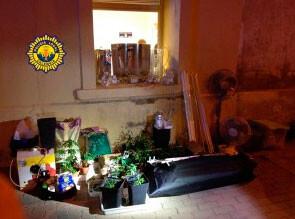 plantacion-de-marihuana-en-calle-jose-artesano