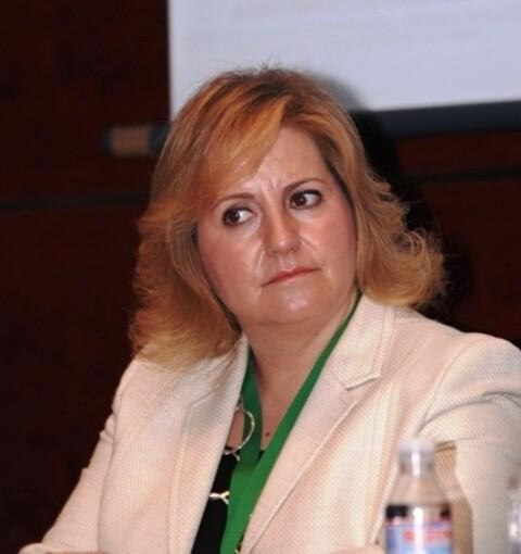 La concejal de Medio Ambiente María Angels Ramón Llin
