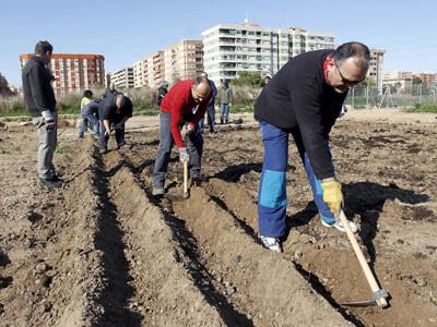 Un grupo de vecinos labran los terrenos en una protesta para conseguir los huertos urbanos
