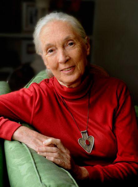 Jane Goodall visita Bioparc Valencia