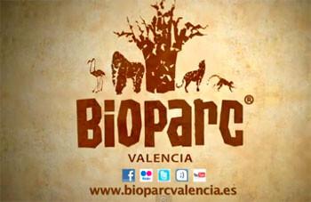 """Nuevo spot de Bioparc: """"Cara a cara con los animales salvajes"""""""