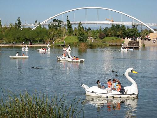 patitos-barca-en-parque