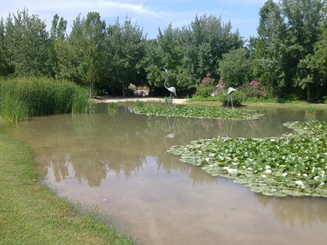 Una zona del lago del Parque de La Rambleta