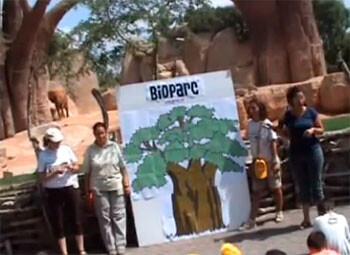 Expedición África - El Árbol Madre. Bioparc Valencia