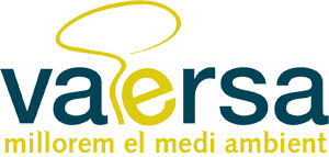 Logo de Vaersa