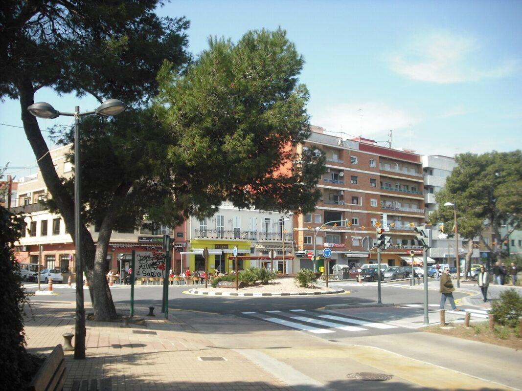El_Saler._Avinguda_dels_Pinars