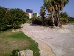 Otra zona del rio seco con los bloques de edificios del complejo Aqua al fondo/vlcciudad