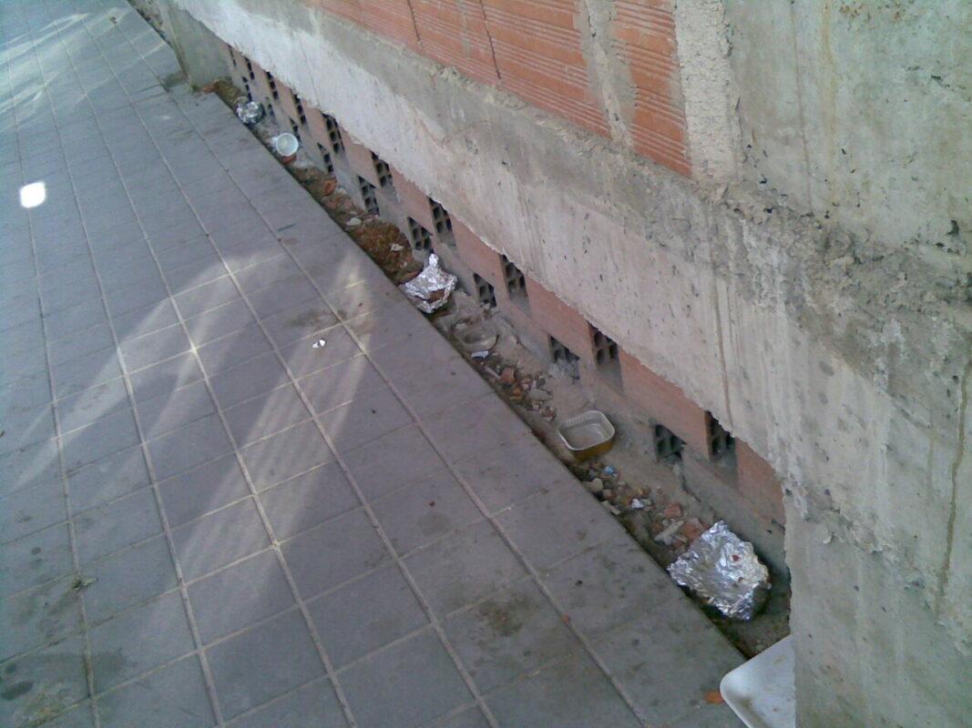 Una zona de una ciudad con alimento para gatos