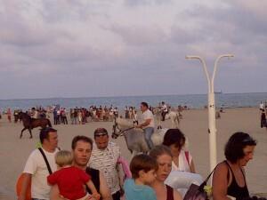 Casi medio millar de personas se acercó a ver la competición centenaria/vlcciudad