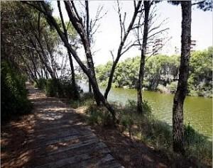 Uno de las zonas de uno de los seis itinerarios peatonales/albufera