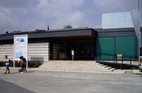 Las colecciones se reubicarán en un futuro recinto que se hará para ampliar el Museo de Ciencias Naturales de Viveros