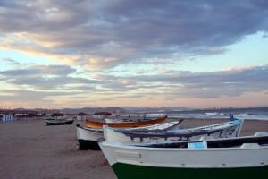 Playa del Cabanyal/manuel m. vicent