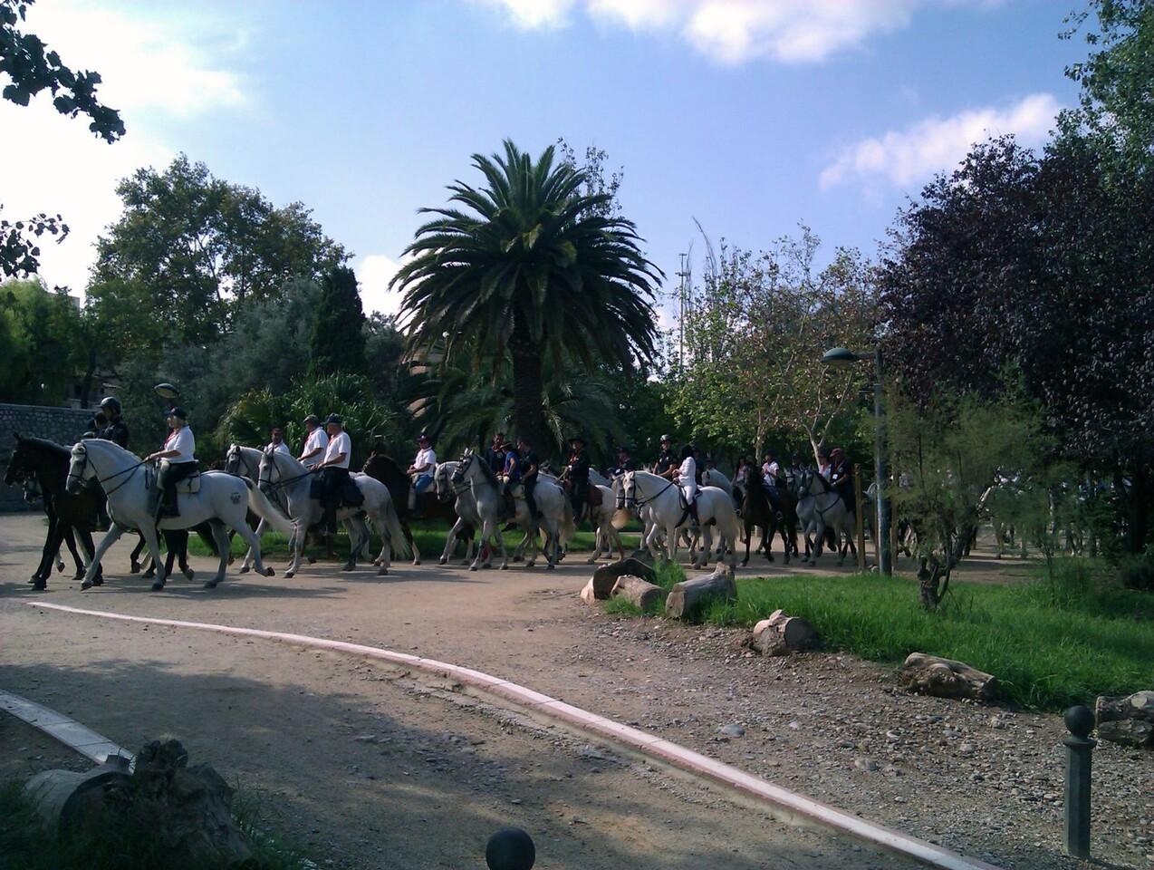 El grupo de jinetes realiza el paseo por el Jardín del Turia/FDM