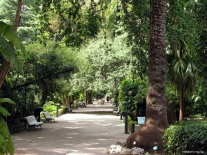 El ayuntamiento invertirá en mejoras en el Jardín de Ayora