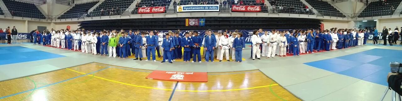 Judokas participantes en los campeonatos nacionales/web judokán