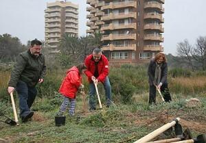 El concejal Aleixandre en una replantación en la Devesa hace tres años