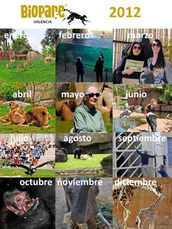 Bioparc Valencia. 2012, mes a mes