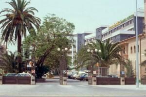 Entrada principal al recinto hospitalario con los árboles monumentales en primer plano/casadelasalud