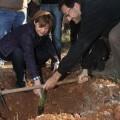 Isabel Bonig, plantando un árbol