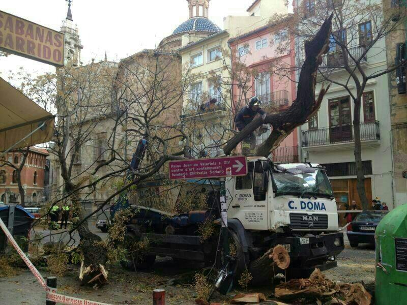 Imagen de como ha quedado el camión tras chocar con los árboles/bomberos valencia
