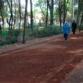 Zonas habilitadas en México DF para la práctica del jogging