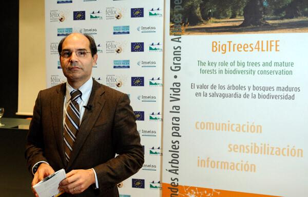 Rafael Pérez, diputado de Empresas Públicas