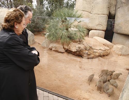 La alcaldesa, Barberá, y el vicealcalde, Grau, en la visita al Bioparc / ayto vlc