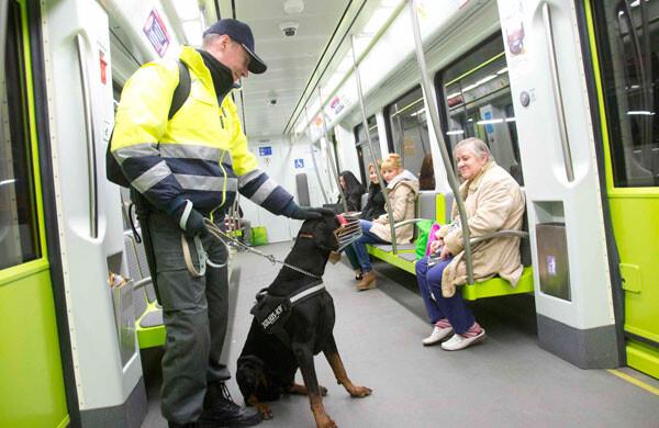 Perros adiestrados en la red del Metro de Valencia