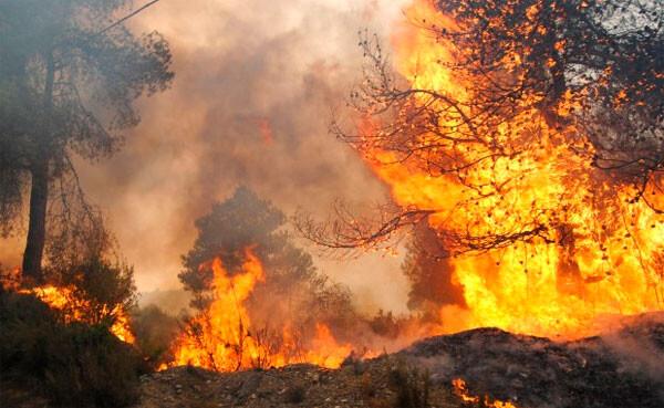 preemergencia-por-riesgo-de-incendios-forestales