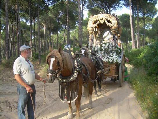 La Carreta de la Hermandad del Rocío de Valencia durante el camino hace unos años/ángel jiménez