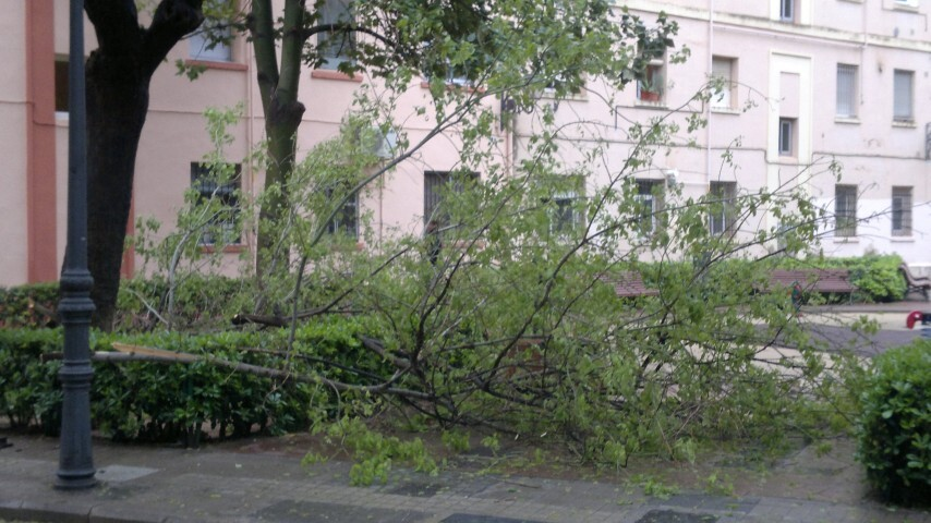 calle corbeta valencia ramas y placa caidas (2)