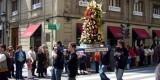 Un grupo de vicentinos porta una canasta en la ofrenda floral/fiestassancristobal