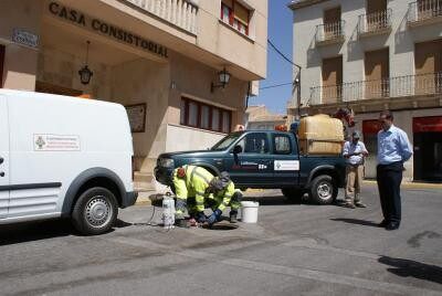 La empresa de control de plagas de Valencia en una operación en otro municipio/lokimica