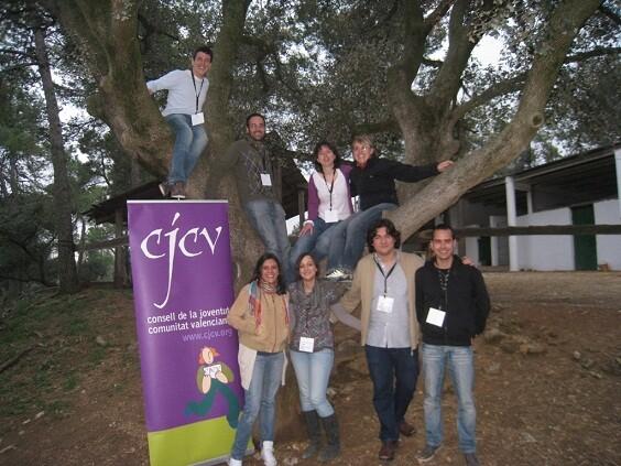Un grupo de jóvenes del Consell València de la Joventut/cv