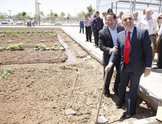 El responsable del Consell Agrari, Vicente Aleixandre, en uno de los huertos urbanos/ayto vlc