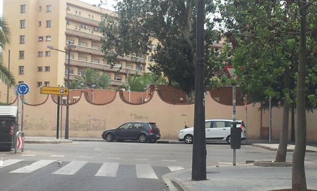 Árboles sin podar en la Cta. Piquer. Foto: Matías Alonso