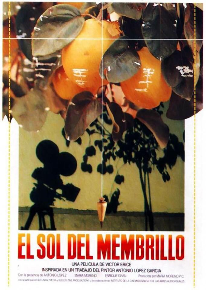 El_sol_del_membrillo-845769236-large