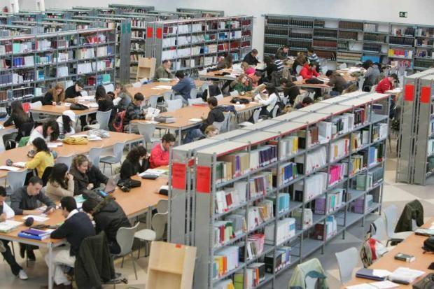 estudiantes_universitarios_tienen_derechos_autor_trabajos