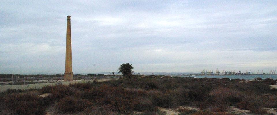 131215-Antiguos-terrenos-Plexi-IMGP8379