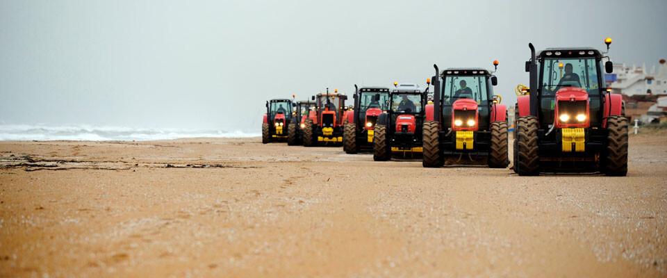Limpieza de playas por parte de efectivos de la Diputación de Valencia. Foto: Abulaila
