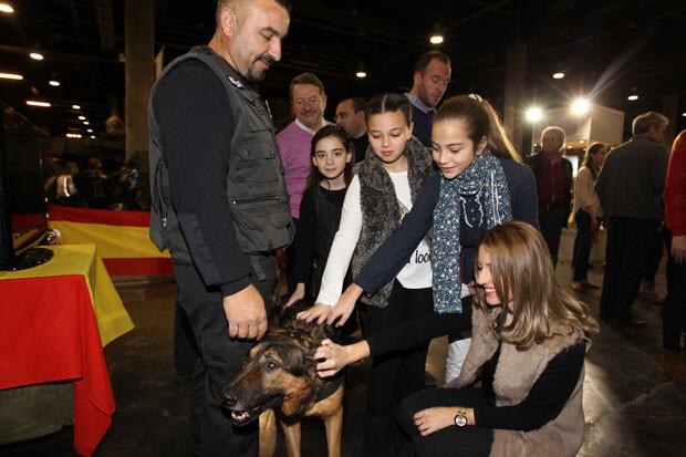 expojove-cortes-perros