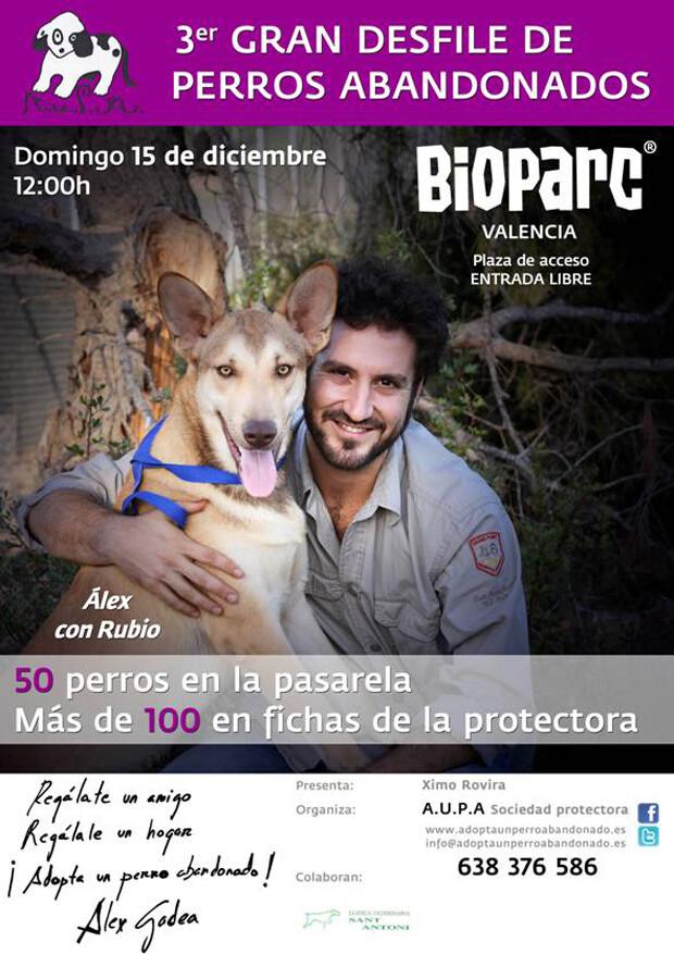 #desfileaupa3 · 3er Desfile Solidario de Perros en Bioparc