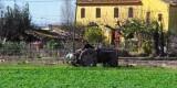 Un agricultor trabaja la huerta en Horta de Rovella