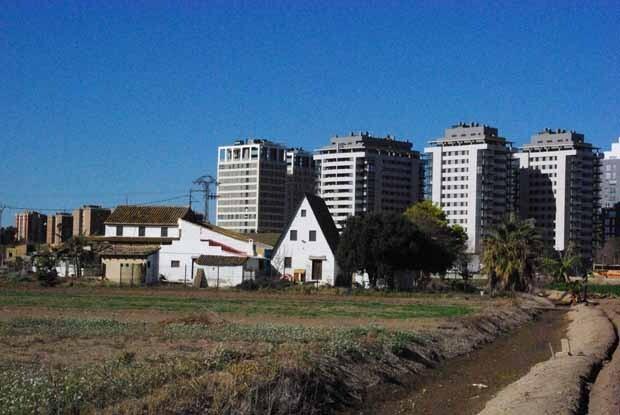Huerta Rovella. Barraca y al fondo bulevar A. Ferrandis