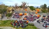 6-aniversario-de-Bioparc-Valencia-suelta-de-globos-con-mensaje-conservacionistas