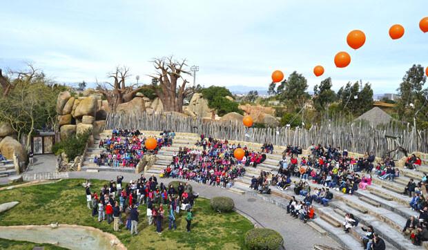 6-aniversario-de-Bioparc-Valencia-suelta-de-globos-con-mensaje-conservacionistas-(2)