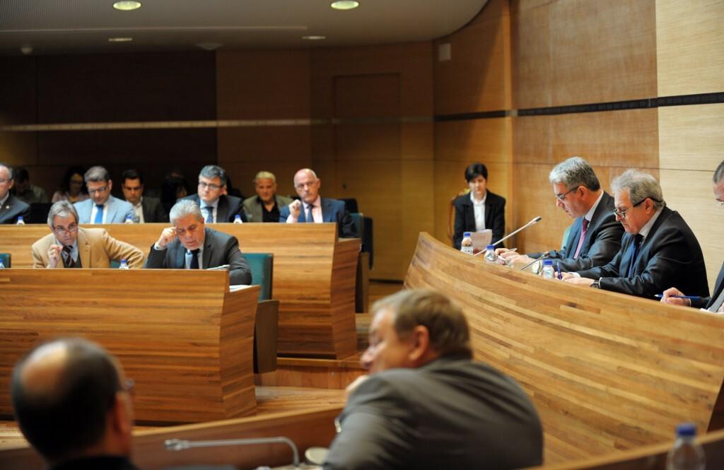 plenaria celebrada esta mañana en la Diputación de Valencia.Foto Abulaila
